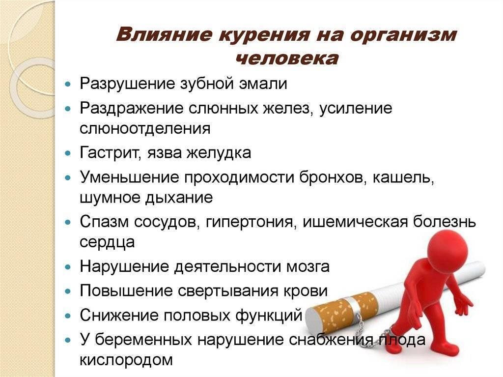 Бросив курить можно ли заниматься бегом? можно ли курить и заниматься спортом - новая медицина