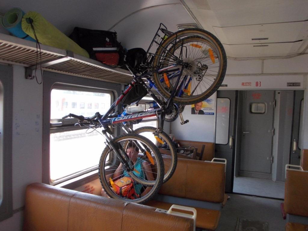 Цппк - условия проезда: ручная кладь, велосипеды, животные